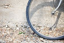 Free Whell Of Bicycle Royalty Free Stock Photos - 24773998