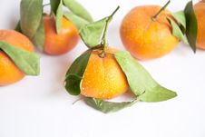 Free Tangerines Royalty Free Stock Image - 24778216