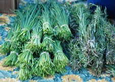 Free Chives, Rosemary At Farmer S Market Royalty Free Stock Photos - 24779468