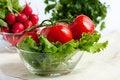 Free Fresh Tomatoes, Radish And Parsley Stock Photo - 24787440