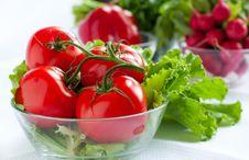 Free Fresh Tomatoes On The Background Of Radish Stock Images - 24787474