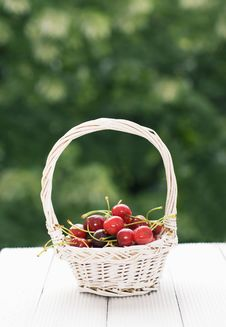 Free Cherries Stock Images - 24793154