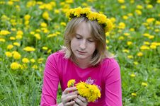 Free Happy Girl In The Field Royalty Free Stock Images - 24794449