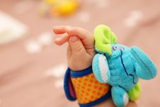 Free Baby Hand Royalty Free Stock Photo - 24797235