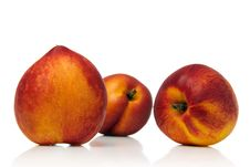 Free Nectarine Royalty Free Stock Photos - 2480428