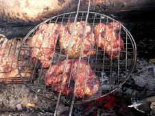 Barbecue On Embers Stock Images