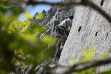 Free Rock Climber Through The Trees Royalty Free Stock Images - 2487439