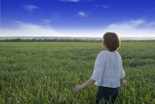 Free The Girl On A Meadow Stock Photo - 2488050