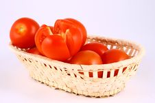 Free Tomato Stock Photography - 2489712