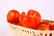 Free Tomato Royalty Free Stock Photography - 2489717