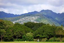 Free Under Trees Under Hill, Oahu, Hawaii Royalty Free Stock Image - 24819506