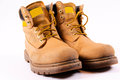 Free Dirty Boots Royalty Free Stock Photo - 24829555