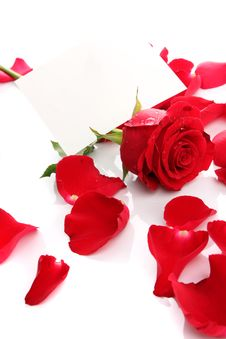Free Beautiful Red Rose Petals With Blank Paper Stock Photo - 24825580