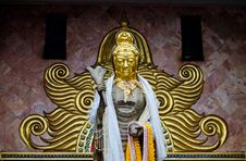 Free Buddhist Bodhisattva Image Royalty Free Stock Photo - 24826615