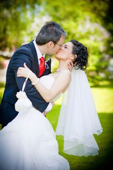 Free Bride And Groom In A Park Kissing On Green Backgro Royalty Free Stock Images - 24829699