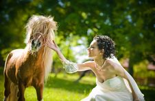 Bride And Ponies In Park Royalty Free Stock Image