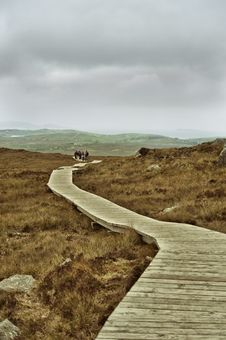 Path In Mountains In Ireland In Fog Royalty Free Stock Photo