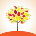 Free Colorful Autumn Tree Royalty Free Stock Photography - 24835007