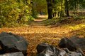 Free Autumn Landscape: The Road, The Stones Royalty Free Stock Images - 24835129