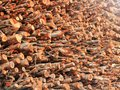 Free Deforestation- Logs Of Chopped Wood Piled For Sale Stock Image - 24836881
