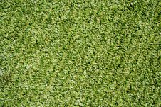 Free Syntethic Green Grass Royalty Free Stock Photos - 24830658