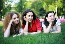 Free Three Friends On The Grass Royalty Free Stock Image - 24836766