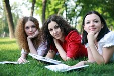 Free Portrait Of Three Friends Studying On The Grass Stock Images - 24836794