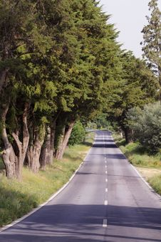Free Empty Country Road Royalty Free Stock Photos - 24844088