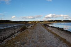 Free Medieval Road To Kalø Royalty Free Stock Images - 24846019