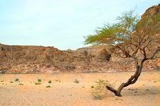 Free Egypt, Sandy Mountains Stock Images - 24847754