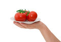 Free Plate With Tomatoes Stock Images - 24850044