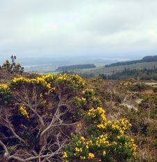 Free Wicklow Mountains Stock Photos - 24851493