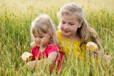 Free Sisters In Field Stock Photos - 24853843