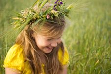 Free Wreath Of Wheat Stock Photo - 24853860
