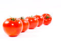 Free Tomatoes In Line Royalty Free Stock Photos - 24860728