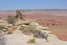 Free Moab Desert Stock Photography - 24861182