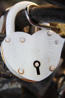 Bright Wedding Locks On The Fence Royalty Free Stock Photos