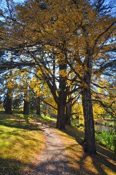Free Christchurch S Hagley Park & Avon River In Autumn Stock Photography - 24870152