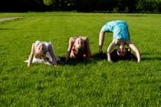 Free Three Girls Doing Exercises, In Nature Royalty Free Stock Photography - 24872487
