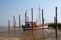 Free Boat On Mudd Royalty Free Stock Photos - 24883968