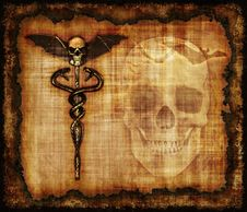 Free Skulls, Sankes And Bat Parchment Royalty Free Stock Photo - 24881415