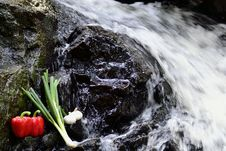 Free Vegetables At The Waterfall Stock Photo - 24884650