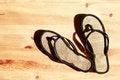 Free Female Flip-Flops Stock Photo - 24896870