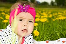 Portrait Of A Baby Girl In The Green Grass Royalty Free Stock Photo