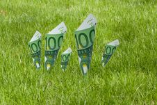 Free 100 Euro Notes Blooming In The Grass Stock Image - 24899251