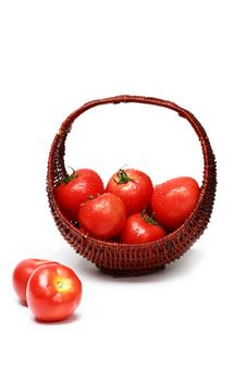 Free Fresh Tomatoes Royalty Free Stock Photography - 2490807