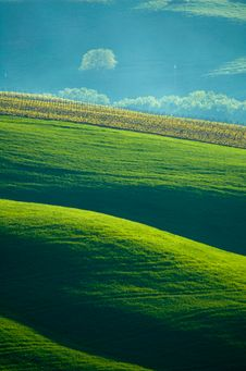 Free Italian Fields Stock Photo - 2491450