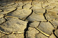 Free Drought Royalty Free Stock Images - 2492889
