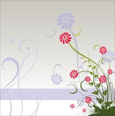 Free Spring Floral Stock Photography - 2494802