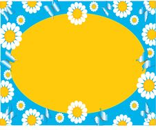 Free Floral Daisy Background Stock Photo - 2498040